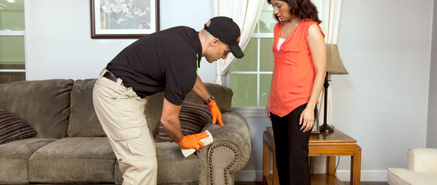 South Portland, ME carpet upholstery cleaning